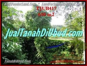 FOR SALE Exotic LAND IN Sentral Ubud BALI TJUB417