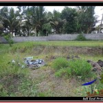 Exotic PROPERTY Ubud Tampak Siring 900 m2 LAND FOR SALE TJUB532