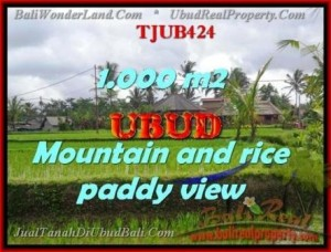 Magnificent PROPERTY 1,000 m2 LAND IN Ubud Tegalalang FOR SALE TJUB424