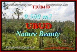 Affordable Ubud Payangan BALI LAND FOR SALE TJUB430