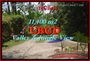 Affordable Ubud Payangan BALI LAND FOR SALE TJUB431