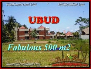 Beautiful PROPERTY 500 m2 LAND IN Sentral Ubud FOR SALE TJUB435