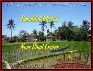 FOR SALE Beautiful LAND IN Sentral Ubud BALI TJUB436