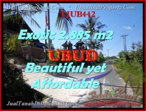 FOR SALE Magnificent PROPERTY 2.885 m2 LAND IN UBUD BALI TJUB442