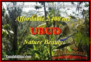 Magnificent 2.400 m2 LAND IN UBUD FOR SALE TJUB454