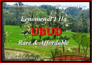 Magnificent 10.000 m2 LAND IN UBUD FOR SALE TJUB456