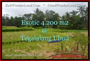 Magnificent PROPERTY UBUD LAND FOR SALE TJUB461