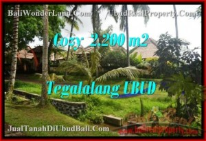 Affordable PROPERTY LAND FOR SALE IN UBUD TJUB462