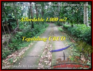 Beautiful PROPERTY 1,000 m2 LAND IN Ubud Tegalalang FOR SALE TJUB467
