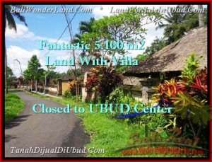 FOR SALE Exotic PROPERTY 5,100 m2 LAND IN UBUD BALI TJUB468