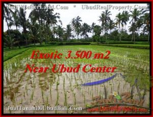 Beautiful UBUD BALI 3,500 m2 LAND FOR SALE TJUB477