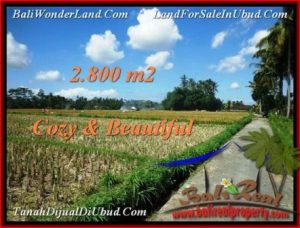 Magnificent LAND FOR SALE IN UBUD TJUB498