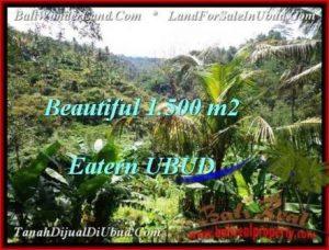 1,500 m2 LAND IN UBUD BALI FOR SALE TJUB503