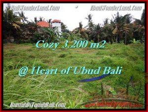 3,200 m2 LAND IN UBUD BALI FOR SALE TJUB510