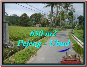 Beautiful PROPERTY LAND IN UBUD BALI FOR SALE TJUB522