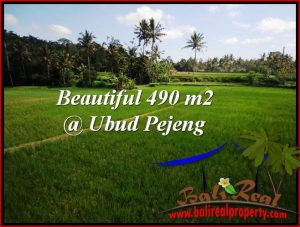 FOR SALE Magnificent 490 m2 LAND IN UBUD BALI TJUB512