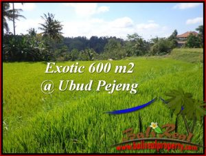 Beautiful 600 m2 LAND FOR SALE IN Ubud Tampak Siring TJUB513