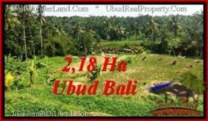 Magnificent UBUD BALI 21,800 m2 LAND FOR SALE TJUB546