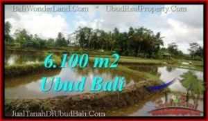 6,100 m2 LAND IN UBUD BALI FOR SALE TJUB547