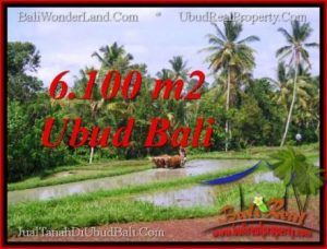 6,100 m2 LAND SALE IN UBUD TJUB552