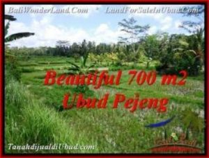 Magnificent LAND SALE IN Ubud Pejeng BALI TJUB534