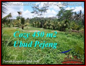 Exotic PROPERTY LAND FOR SALE IN UBUD TJUB535