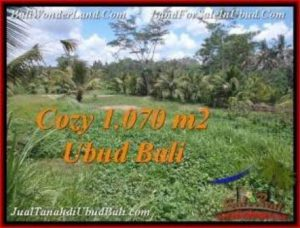 Magnificent PROPERTY LAND IN UBUD FOR SALE TJUB536