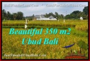 Affordable PROPERTY LAND IN UBUD FOR SALE TJUB540