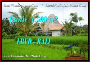 Exotic LAND FOR SALE IN UBUD TJUB541