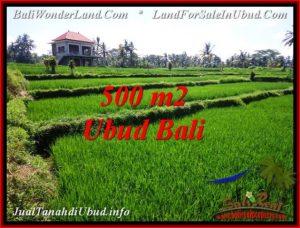 Affordable Sentral Ubud BALI LAND FOR SALE TJUB543