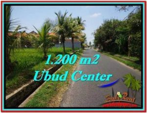 Exotic LAND FOR SALE IN UBUD TJUB525