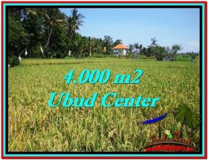 Magnificent 4,000 m2 LAND FOR SALE IN Sentral Ubud TJUB527