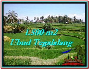 Beautiful 1,500 m2 LAND IN Ubud Tegalalang FOR SALE TJUB528