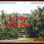 Exotic 15,700 m2 LAND SALE IN UBUD BALI TJUB549