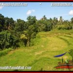 Beautiful 5,400 m2 LAND IN Ubud Tegalalang FOR SALE TJUB550