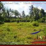 Exotic PROPERTY 15,000 m2 LAND SALE IN Ubud Tegalalang TJUB551