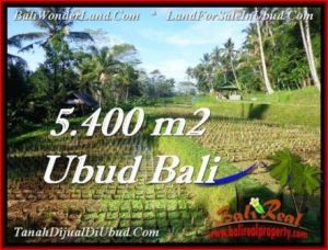 Exotic 5,400 m2 LAND IN UBUD BALI FOR SALE TJUB554