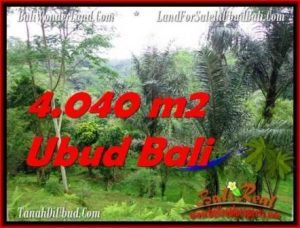 FOR SALE Exotic LAND IN Ubud Tegalalang TJUB555