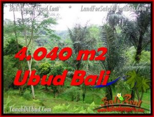 Exotic 4,040 m2 LAND SALE IN UBUD BALI TJUB555