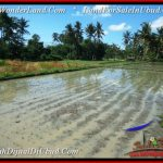 Exotic PROPERTY 1,050 m2 LAND IN Sentral Ubud FOR SALE TJUB544