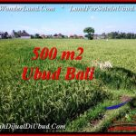 Magnificent LAND FOR SALE IN UBUD TJUB545