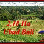 Magnificent 21,800 m2 LAND FOR SALE IN Sentral Ubud TJUB546