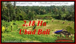 Magnificent 21,800 m2 LAND FOR SALE IN Sentral Ubud TJUB546