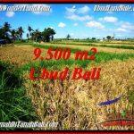 Magnificent 9,500 m2 LAND SALE IN Sentral Ubud TJUB548