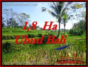 Exotic 16,000 m2 LAND FOR SALE IN UBUD BALI TJUB553