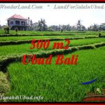 FOR SALE Exotic PROPERTY LAND IN UBUD TJUB543