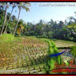 Affordable UBUD BALI 5,400 m2 LAND FOR SALE TJUB554