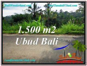 Affordable 1,500 m2 LAND SALE IN Ubud Tegalalang BALI TJUB556