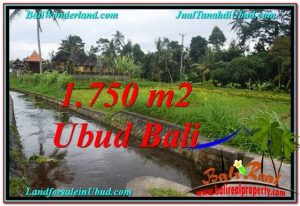 Beautiful PROPERTY 715 m2 LAND IN Ubud Tampak Siring FOR SALE TJUB557