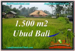 Beautiful PROPERTY 1,500 m2 LAND SALE IN UBUD BALI TJUB558